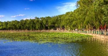 beijing greening