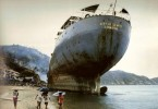 cargo ship washed ashore