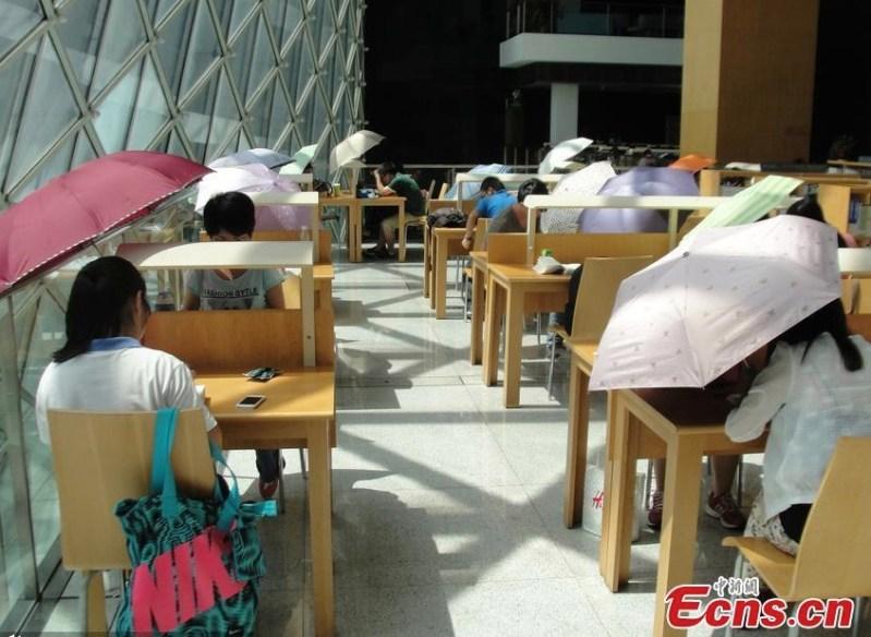 Chinese readers Shenzhen