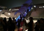 plane emergency landing