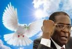 robert mugabe peace prize