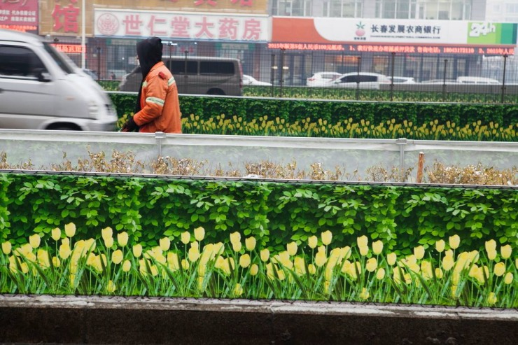 China banner flowers