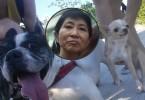 claudia mo dogs