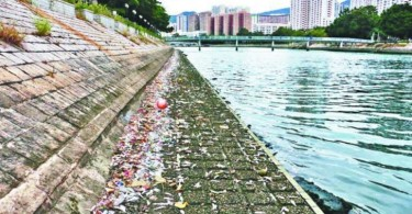 Shing Mun River pollution.