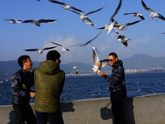 Photo: kunming.cn.