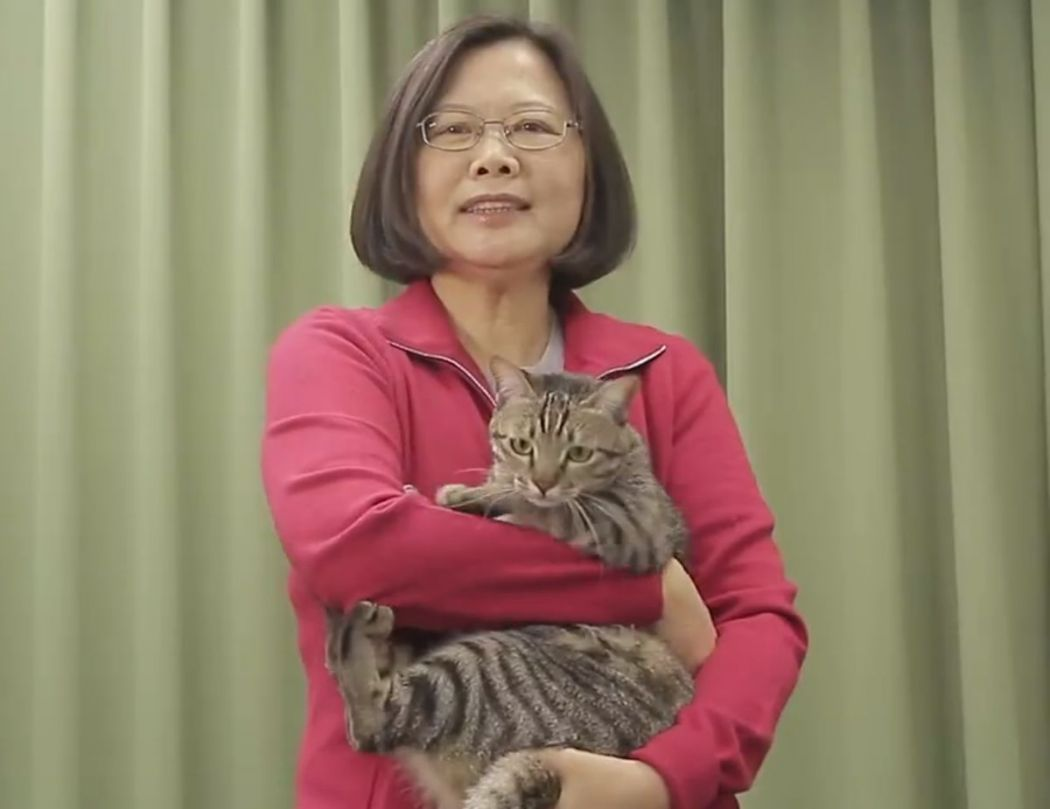 Tsai Ing-wen with cat