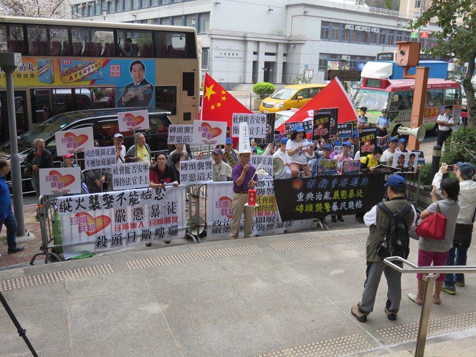 pro-govt protest