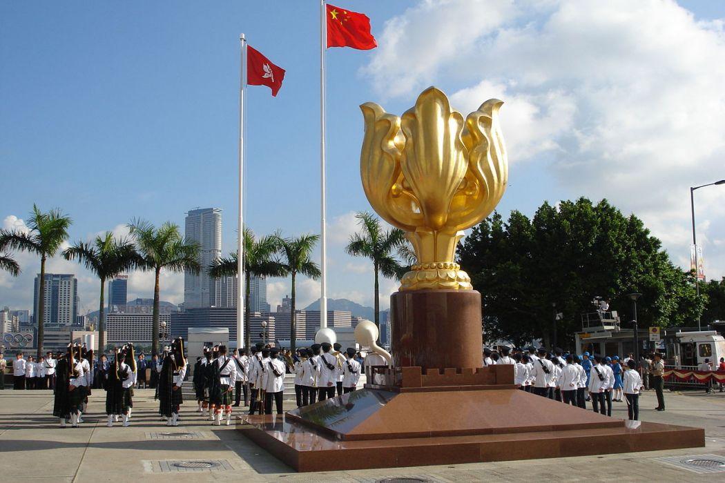 Gold Bauhinia Square