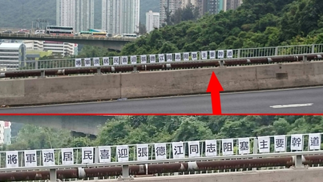 Banners protesting against Zhang