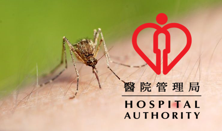 hospital authority mosquito