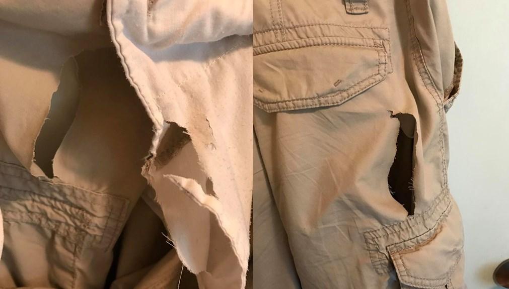 sliced pants