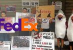 fedex-sharkfin-protest