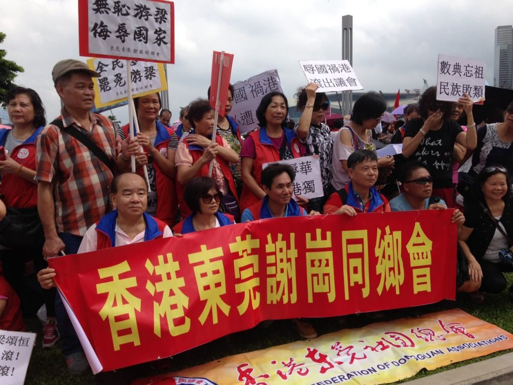 rally legco oath china