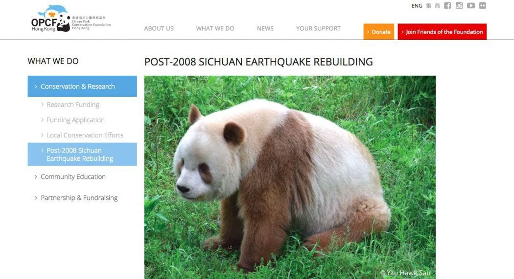 panda ocean park foundation