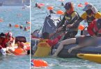 harbour swim death