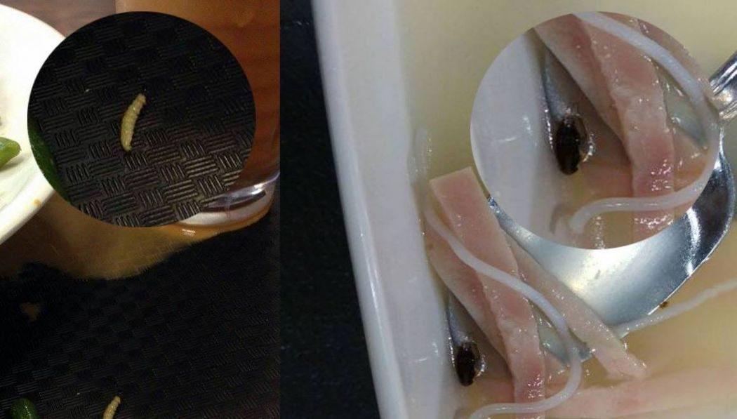 baptist university worm