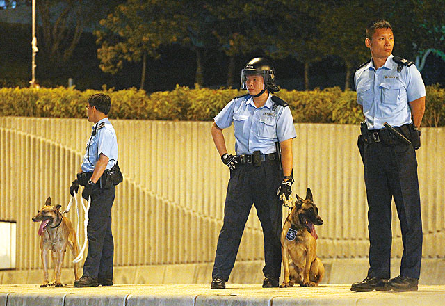 police dog occupy