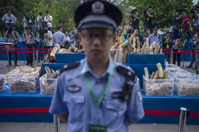 ivory china ban