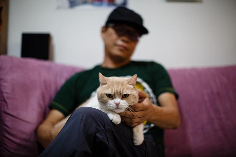 cat hong kong shop