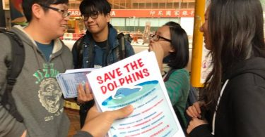 save the dolphins roni wong ocean park