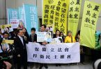 pan-democrats high court protest judicial review
