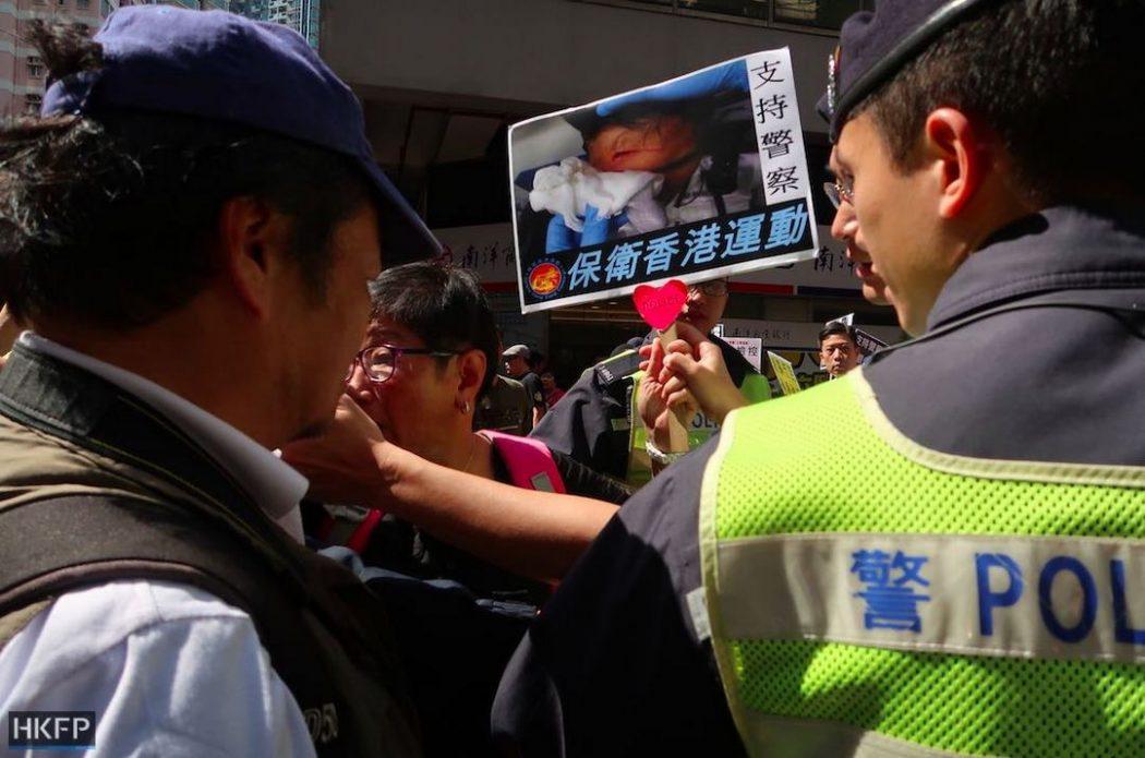 pro-beijing pro-china pro-establishment