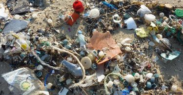 plastic waste beach