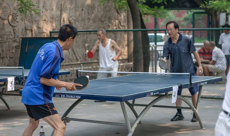 Table Tennis Ping Pong