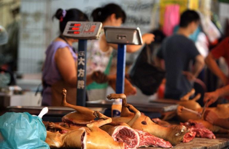 dog meat china