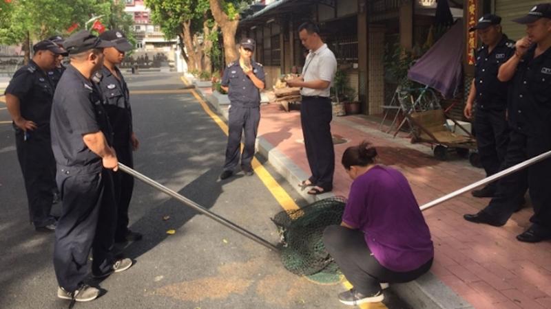 chung ying street