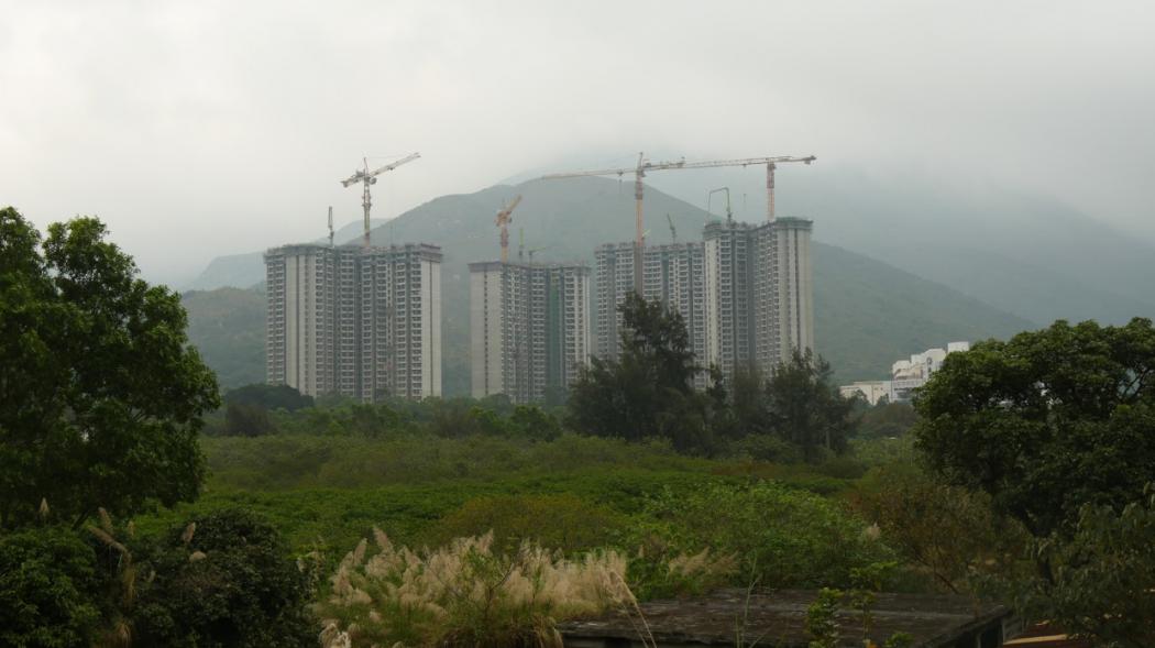 hong kong biodiversity
