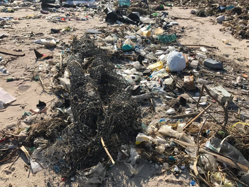 sham wan beach typhoons debris