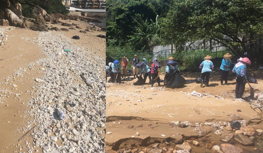 90 tons of oil waste removed from beaches in Hong Kong