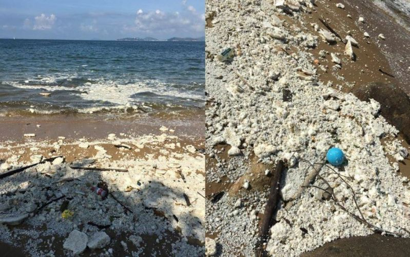 palm oil beach spill