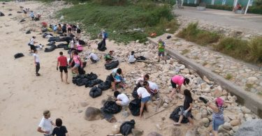 palm oil beach clean up
