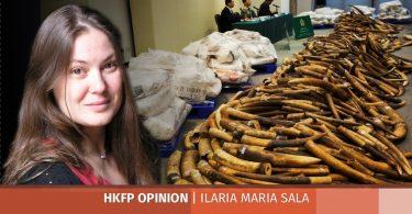 illaria ivory