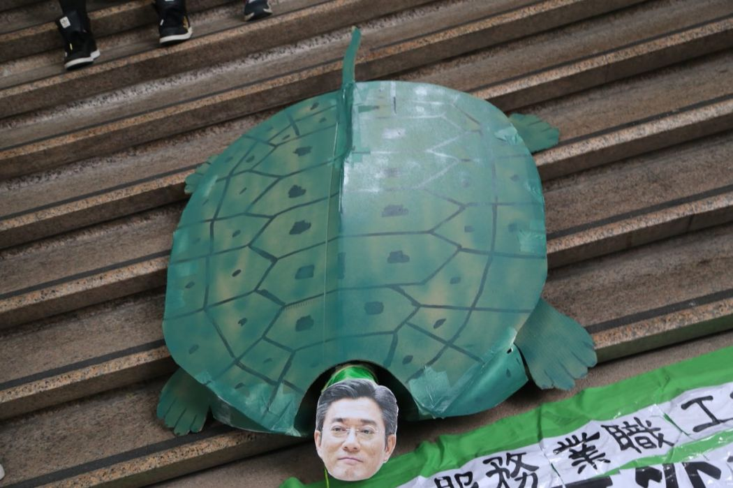Stanley Ying turtle