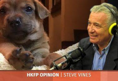 dogs steve vines