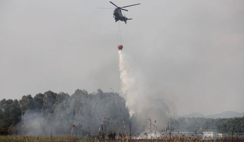 Nam San Wai fire