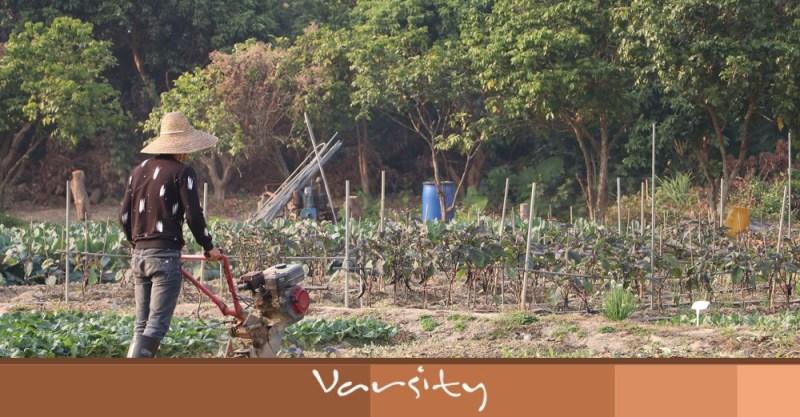 farmer varsity