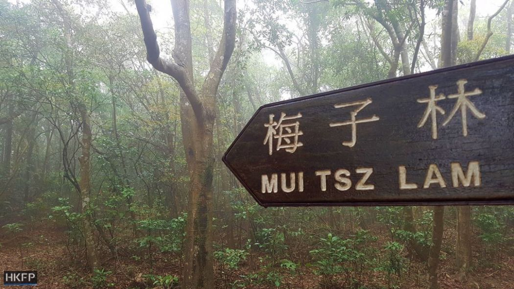 Mui Tsz Lam to Mau Ping
