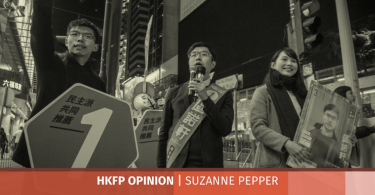 suzanne pepper district councils