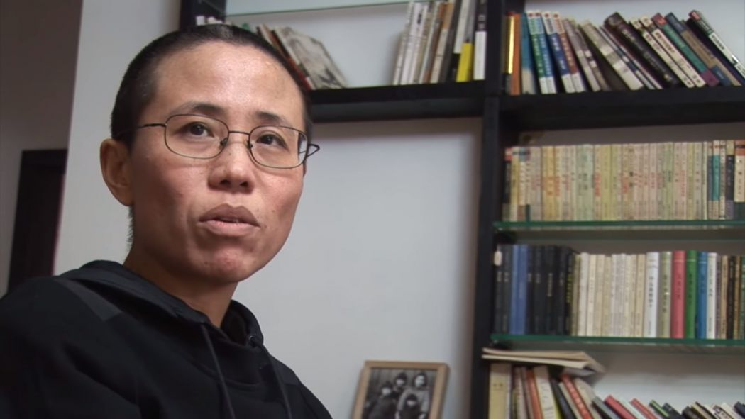 Rights groups cautiously hail Liu Xia departure