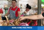 dog meat yulin