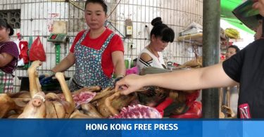 dog meat yulin