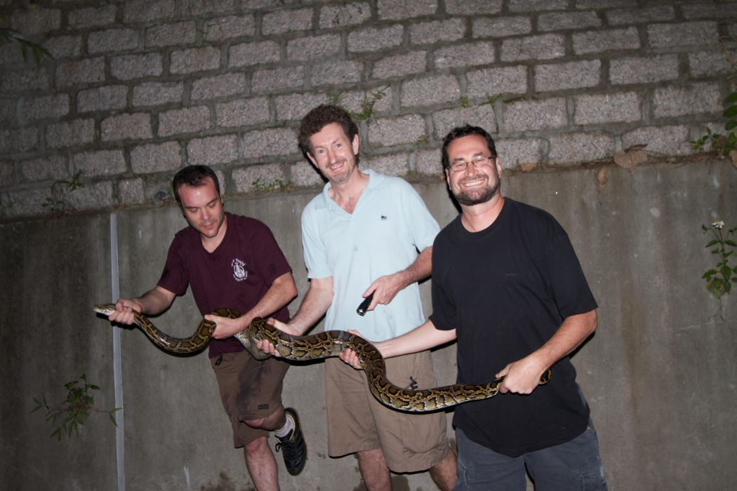 robert ferguson hong kong snake id