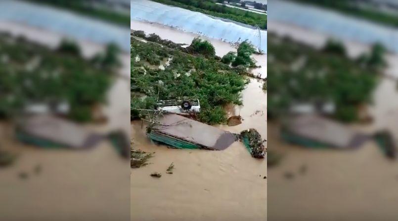 Shandong flood