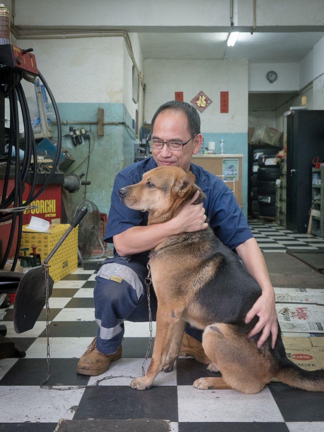 Puppy Love Marcel Heijnen
