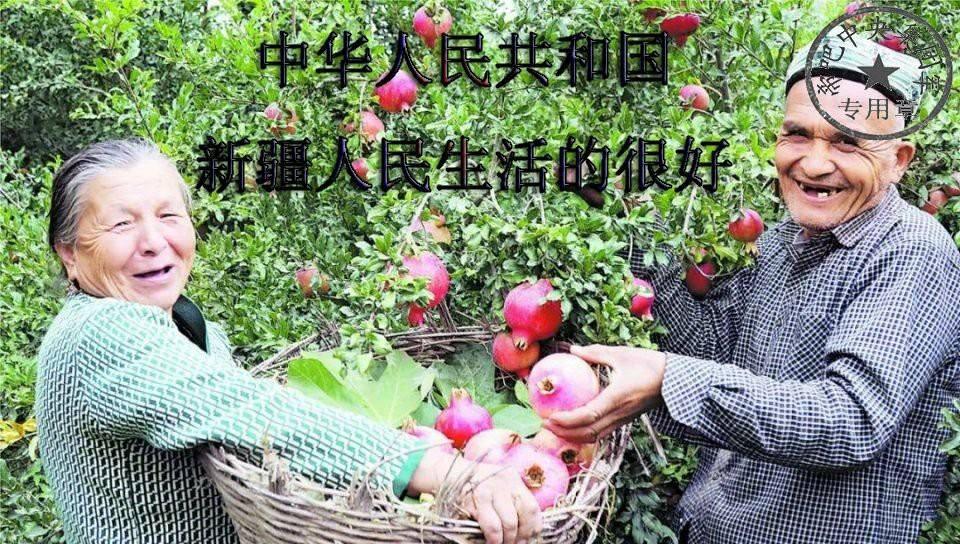 Xinjiang cyber abuse