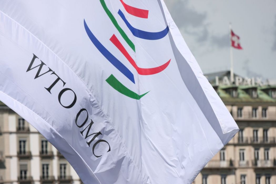 world trade organisation wto
